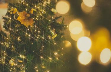 【大きなクリスマスツリーをおすすめするわけ】ツリーを買ったら小さな奇跡が起きた話