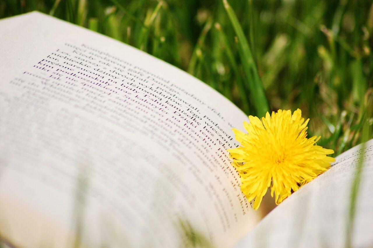 環境問題を易しく学べる本を読もう